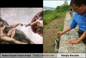 Sistine Chapel's Touch of God Totally Looks Like Hungry Raccoon