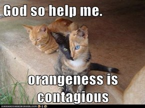 God so help me.  orangeness is contagious