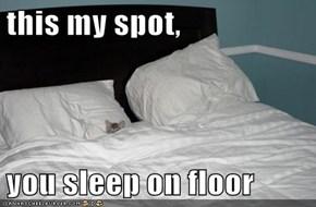 this my spot,   you sleep on floor
