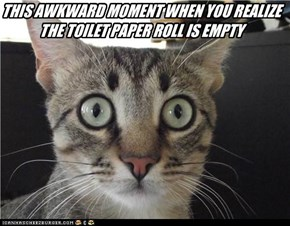 THIS AWKWARD MOMENT WHEN YOU REALIZE THE TOILET PAPER ROLL IS EMPTY