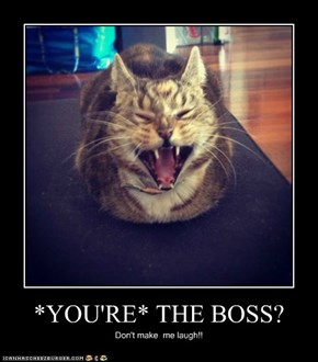 *YOU'RE* THE BOSS?