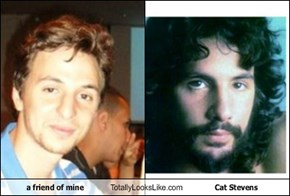 a friend of mine Totally Looks Like Cat Stevens
