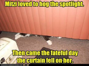 Mitzi loved to hog the spotlight.