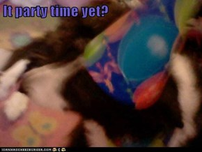 It party time yet?
