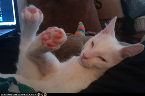 Smell My Jellybean Toes!