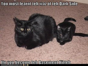 You must learnt teh waz of teh Dark Side  Ifn you become teh Basement Kitteh