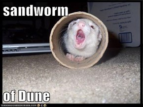 sandworm  of Dune
