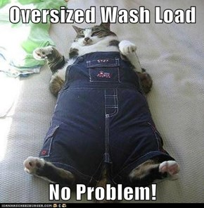 Oversized Wash Load  No Problem!
