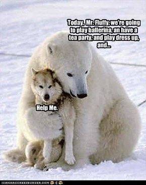 Of All the Polar Bears in the World...