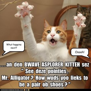 KKPS: Adbentures ob BWAVE ASPLORER KITTEH are most popular for storytime!