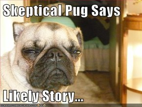 Skeptical Pug Says  Likely Story...