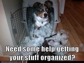 Need some help getting your stuff organized?