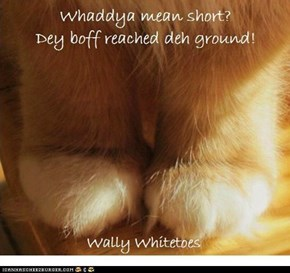Wally Whitetoes' white toes