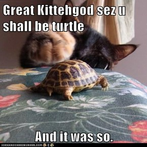 Great Kittehgod sez u shall be turtle  And it was so.