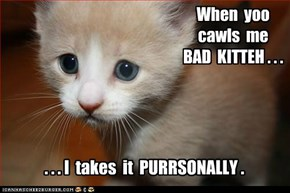 When  yoo  cawls  me   BAD  KITTEH . . .