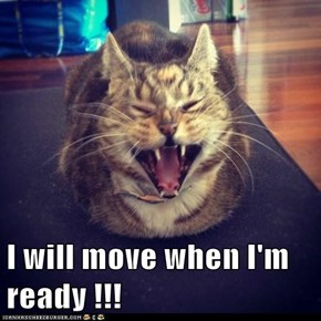I will move when I'm ready !!!