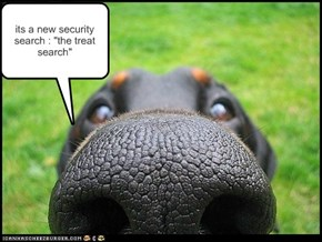 "its a new security search : ""the treat search"""