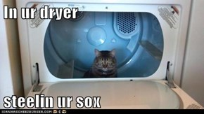 In ur dryer  steelin ur sox