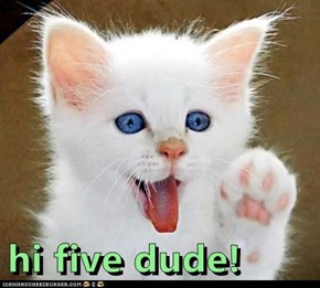 hi five dude!