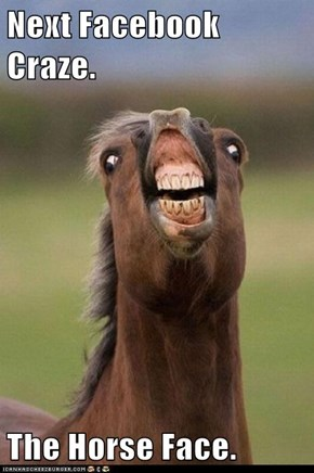 Next Facebook Craze.  The Horse Face.