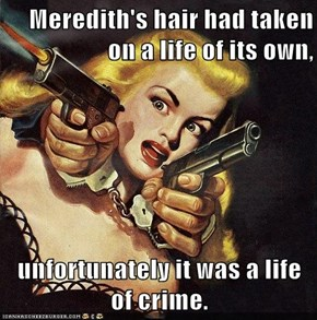 Meredith's hair had taken on a life of its own,  unfortunately it was a life of crime.