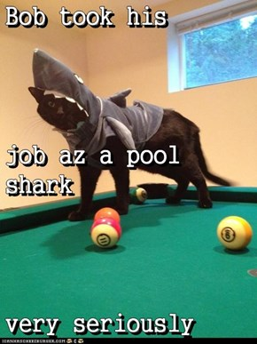 Bob took his job az a pool shark very seriously