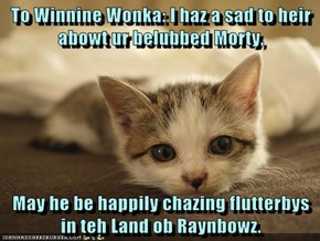 To Winnine Wonka: I haz a sad to heir abowt ur belubbed Morty,  May he be happily chazing flutterbys in teh Land ob Raynbowz.