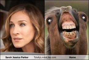 Sarah Jessica Parker Totally Looks Like Horse