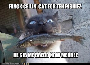 FANGK CEILIN' CAT FOR TEH PISHIEZ