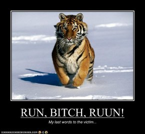 RUN, BITCH, RUUN!
