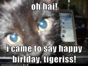 oh hai!  i came to say happy birfday, tigeriss!