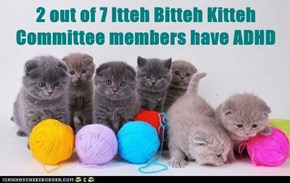 2 out of 7 Itteh Bitteh Kitteh Committee members have ADHD