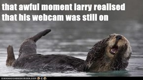 that awful moment larry realised that his webcam was still on