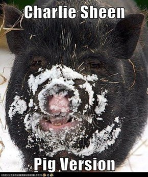 Charlie Sheen  Pig Version
