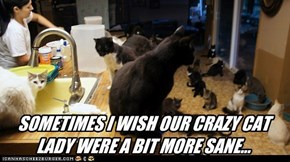SOMETIMES I WISH OUR CRAZY CAT LADY WERE A BIT MORE SANE...
