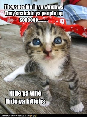 Hide ya wife Hide ya kittehs