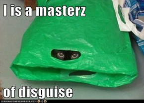 I is a masterz  of disguise