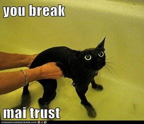 you break  mai trust