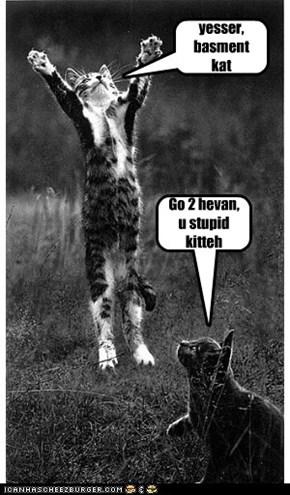 Go 2 hevan, u stupid kitteh