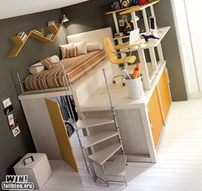 Dorm Design WIN