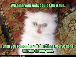 Wishing your pets could talk is fun,
