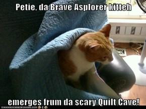 Petie, da Brave Asplorer kitteh  emerges frum da scary Quilt Cave!