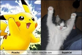 Picachu Totally Looks Like SupahCat