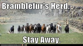 Bramblefur's Herd.  Stay Away.