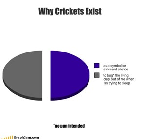 Why Crickets Exist