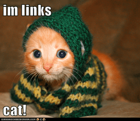 im links  cat!