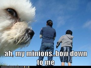 ah, my minions..bow down to me