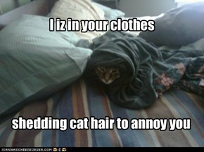 I iz in your clothes...