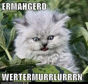 ERMAHGERD  WERTERMURRLURRRN