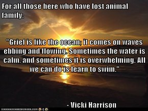 "For all those here who have lost animal family:  ""Grief is like the ocean; it comes on waves ebbing and flowing. Sometimes the water is calm, and sometimes it is overwhelming. All we can do is learn to swim.""                        - Vicki Harrison"